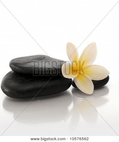 Spa stone and Flower