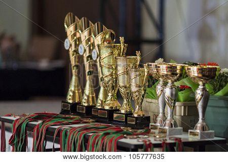 Award Cups Lineup