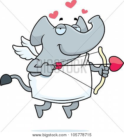 Elephant Cupid