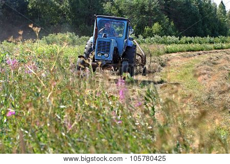 Blue Wheeled  Russian Farm Tractor Working On Mown Meadow, Hayfield.