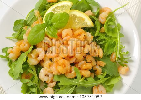 plate of shrimp and greens salad