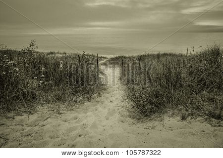 Winding Beach Path