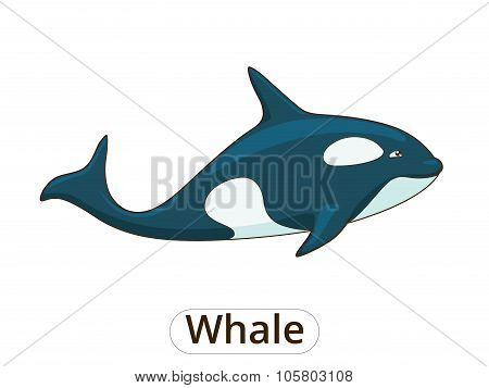 Whale orca cartoon vector illustration