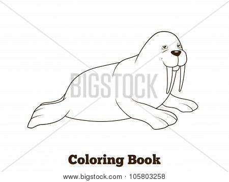 Walrus cartoon coloring book vector illustration