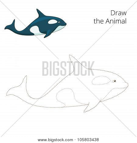 Learn to draw animal whale vector illustration