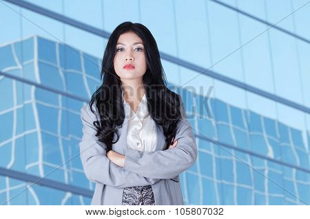 Gorgeous Businesswoman With Long Hair