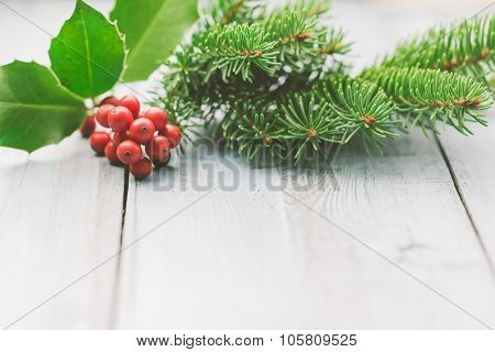 Christmas decoration of holly berry and fir tree branch