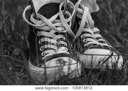 Sneakers On Background Floor