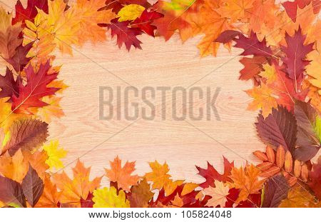 Frame Of Autumn Leaves On A Wooden Surface