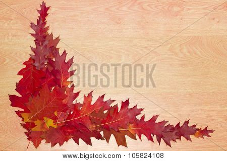 Oak Leaves, Laid Out On A Wooden Surface