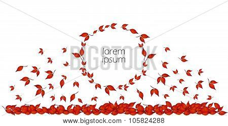 Autumn leaves in circle