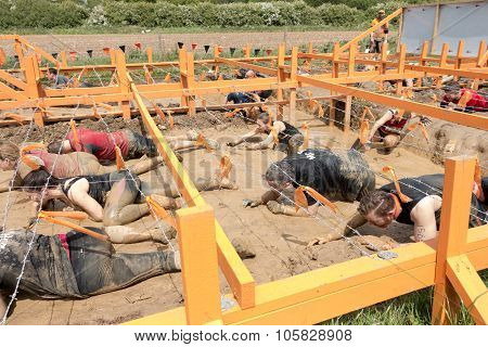 Tough Mudder 2015: Barbed Wire