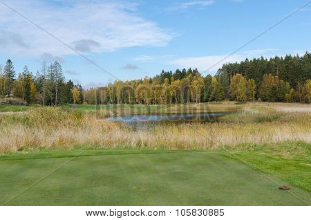 Autumn At Golf Course