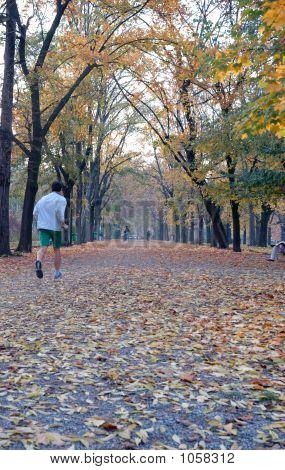 Running In Autumn