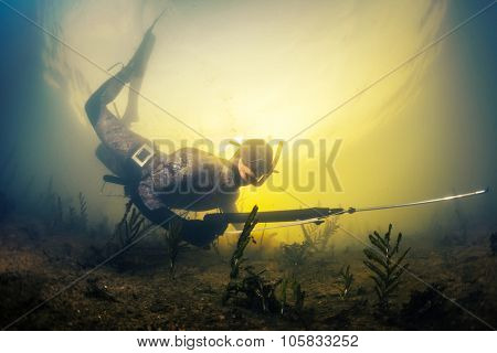 Man swimming underwater with spear gun over muddy bottom of the pond