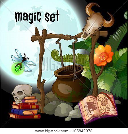 Magic set of wizard