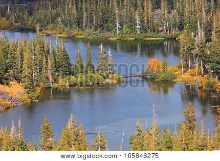 Twin lakes aerial view near Mammoth lakes Sierra mountains