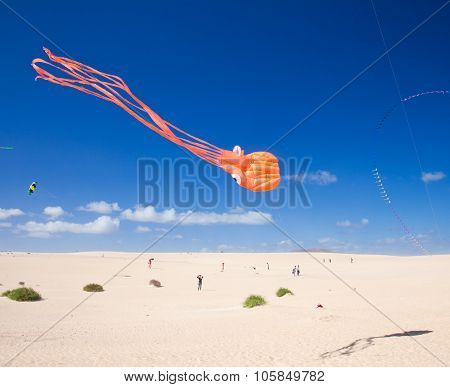Fuerteventura, Spain - November 10: Viewers Watch From The Ground As Multicolored Kites Fill The Sky