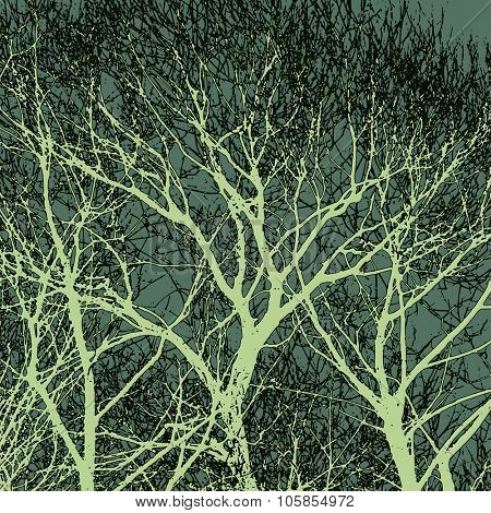 Crazy tree silhouettes, vector