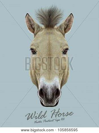 Vector Illustrated Portrait of Wild Horse on blue backgrould