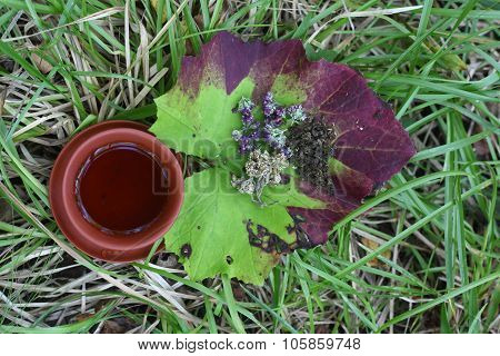 Ceramic cup on the grass with herbs
