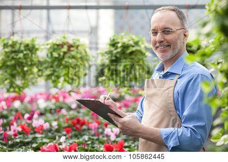 Cheerful senior gardener is working at greenhouse