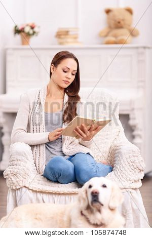 Reading girl in the armchair and her dog around.