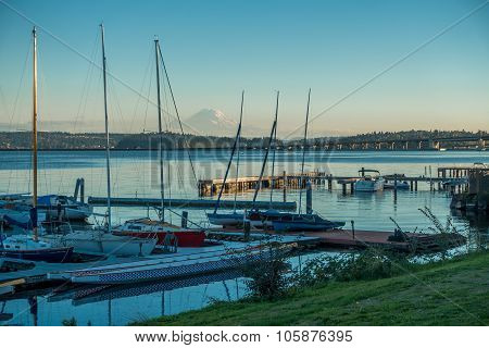 Along Lake Washington - Rainer 3
