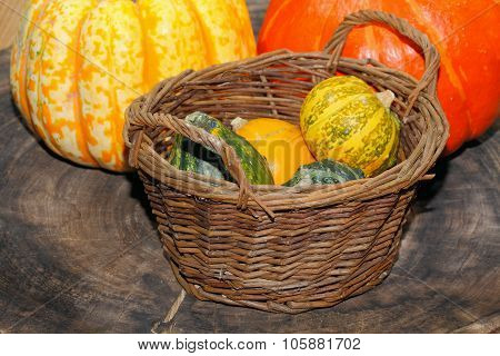 Autumn Decoration, Pumpkin, Gourd