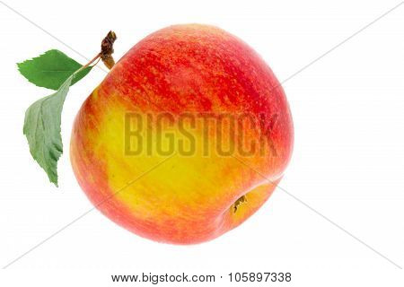 One Apple With A Leaf On A White Background