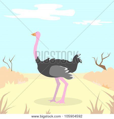 Cartoon Ostrich Desert Sand Blue Sky Colorful Flat Retro