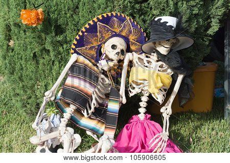Skeleton Sculpture On Display