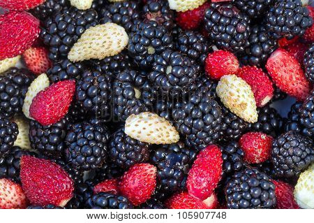 Blackberries And Strawberry Close-up