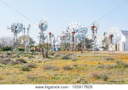 Windmill Museum In Loeriefontein