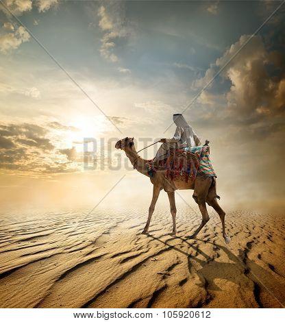 Journey through desert