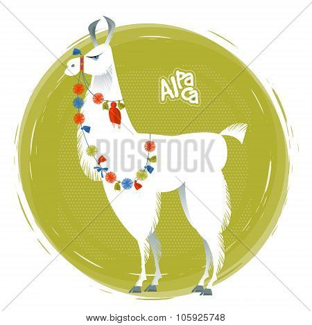 Cute Lama Alpaca. Animal Illustration.