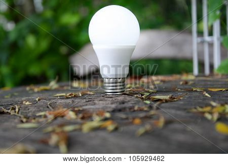 Led Bulb With Lighting - Technology Of Eco-friendly Lighting