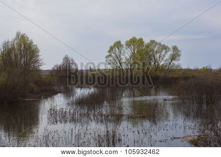 the spring floods in river. ecological catastrophy