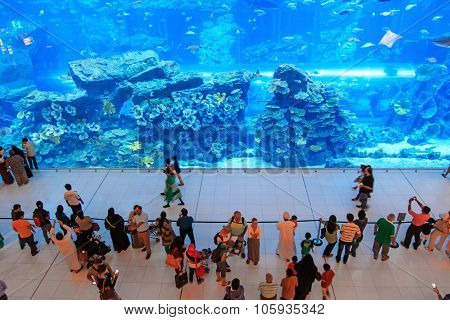 Dubai, Uae - October 07,2014 : Aquarium In Dubai Mall - World's Largest Shopping Mall , Downtown Bur