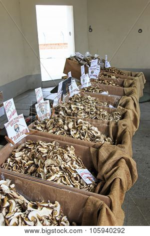 Moncalvo, Italy - October 18,2015: Stand Of A Mushrooms Vendor At The Truffle Fair Of Moncalvo, Ital