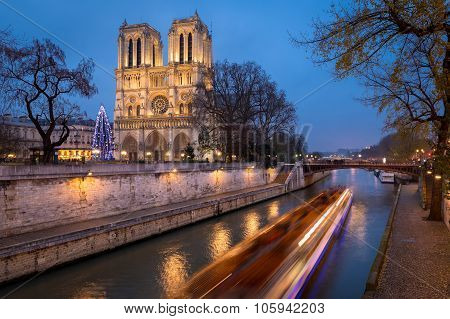 Christmas Tree at Notre Dame Cathedral illuminated in early evening on Ile de la Cite with passing tour boat on the Seine River Paris France, Christmas Tree at Notre Dame Cathedral illuminated in early evening on Ile de la Cite with passing tour boat on the Seine River Paris France