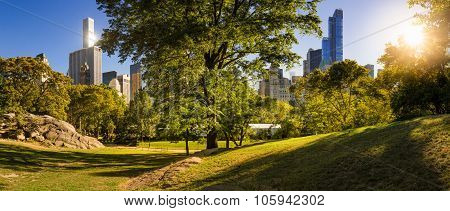 Central Park In Summer With Manhattan Skyscrapers, New York City