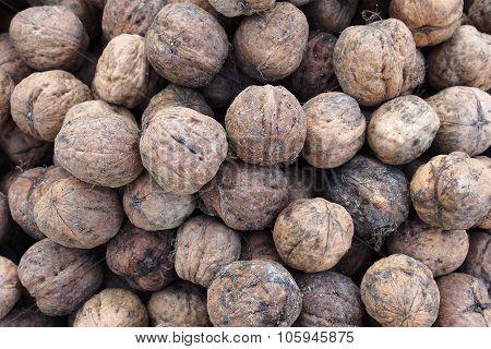 Organic walnuts from Italy