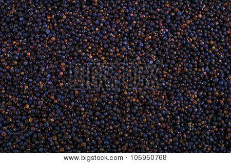 Frozen Wild Blueberries In Crates Texture - Background