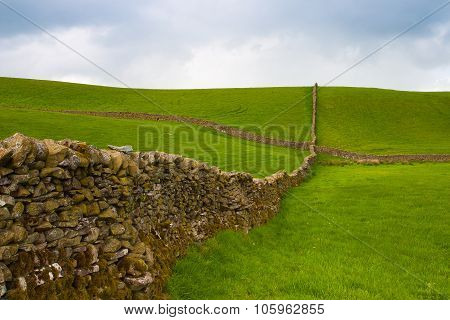 Typical Dry Stones Wall On The Pasture In Yorkshire Dales