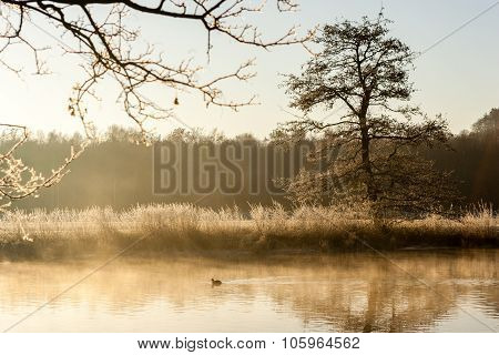 Sunrise At The Ruhr In Schwerte