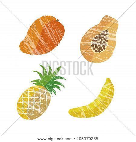 Tropical Fruits Illustration