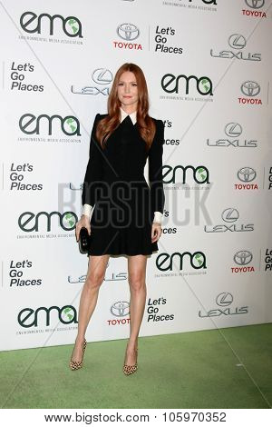 LOS ANGELES - OCT 24:  Darby Stanchfield at the Environmental Media Awards 2015 at the Warner Brothers Studio Lot on October 24, 2015 in Burbank, CA