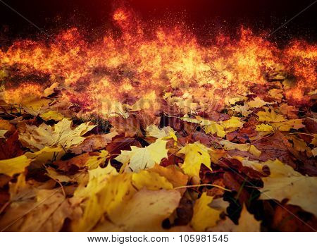 Background from the burning autumn leaves