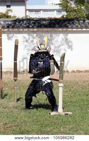 Japanese samurai of sword fighting